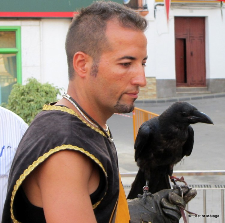 Bird of prey handler at the medieval market in Torrox, east of Malaga