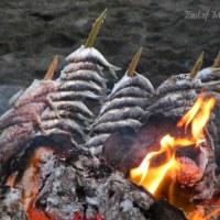 Silent Sunday in Andalucía: Sardines at the Beach