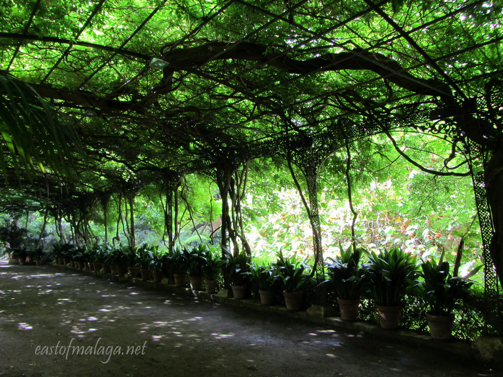 Mansion Indoor Garden gardening east of málaga page 6