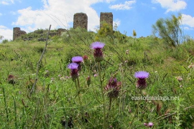 Zalia castle near Zafarraya, Spain