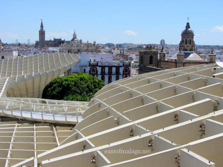 Giralda, Sevilla cathedral and setas