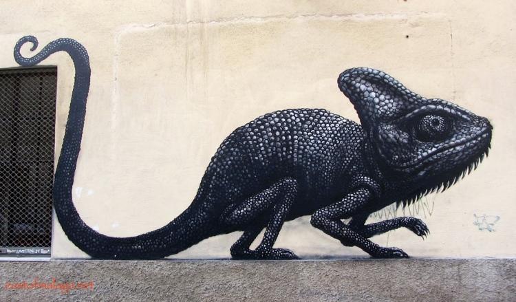 Street Art in Malaga by ROA  - Málaga Arte Urbano en el SoHo (MAUS)