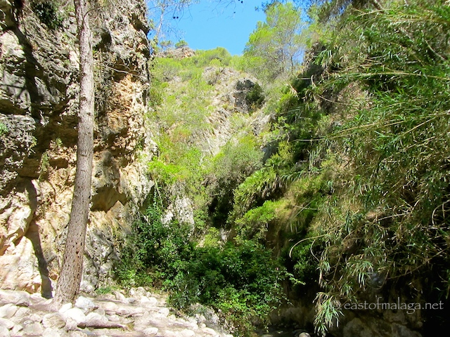 Gorgeous scenery on the River Chillar walk, Nerja
