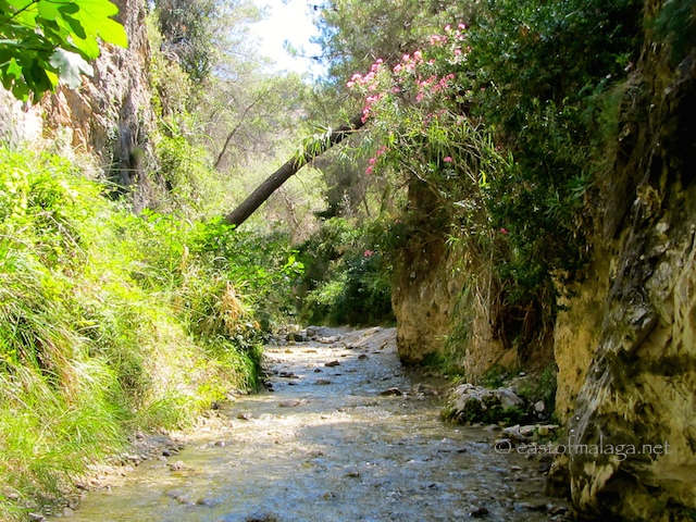 Chilling at the River Chillar, Nerja