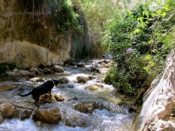 Plenty of water in the River Chillar, Nerja