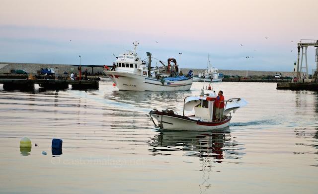 Fishermen returning to the harbour at Caleta de Vélez at sunrise