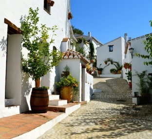 Cobbled street in El Acebuchal
