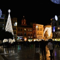 Shining Brightly: Malaga's Christmas Lights