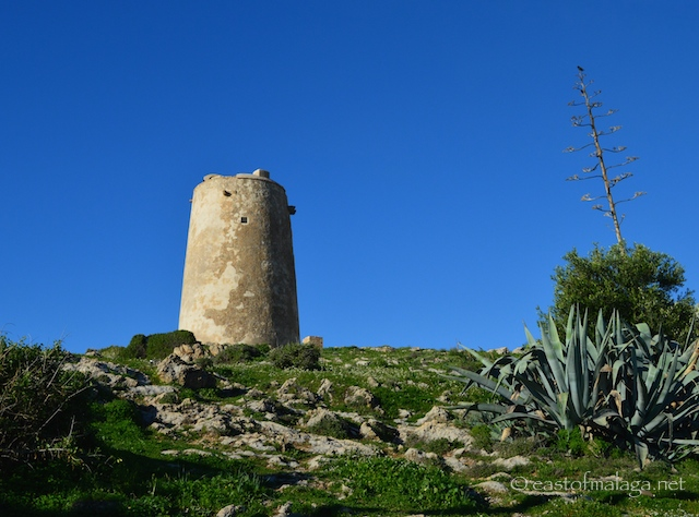 El Torre del las Palomas,  La Arana