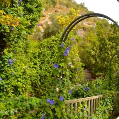 Head through the pretty archway to Baños de Vilo, Periana