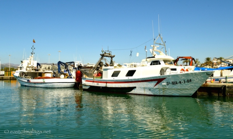 Fishing boats in Caleta harbour